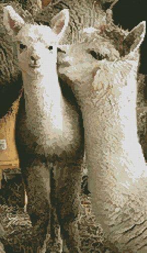 Alpacas by Artecy printed cross stitch chart